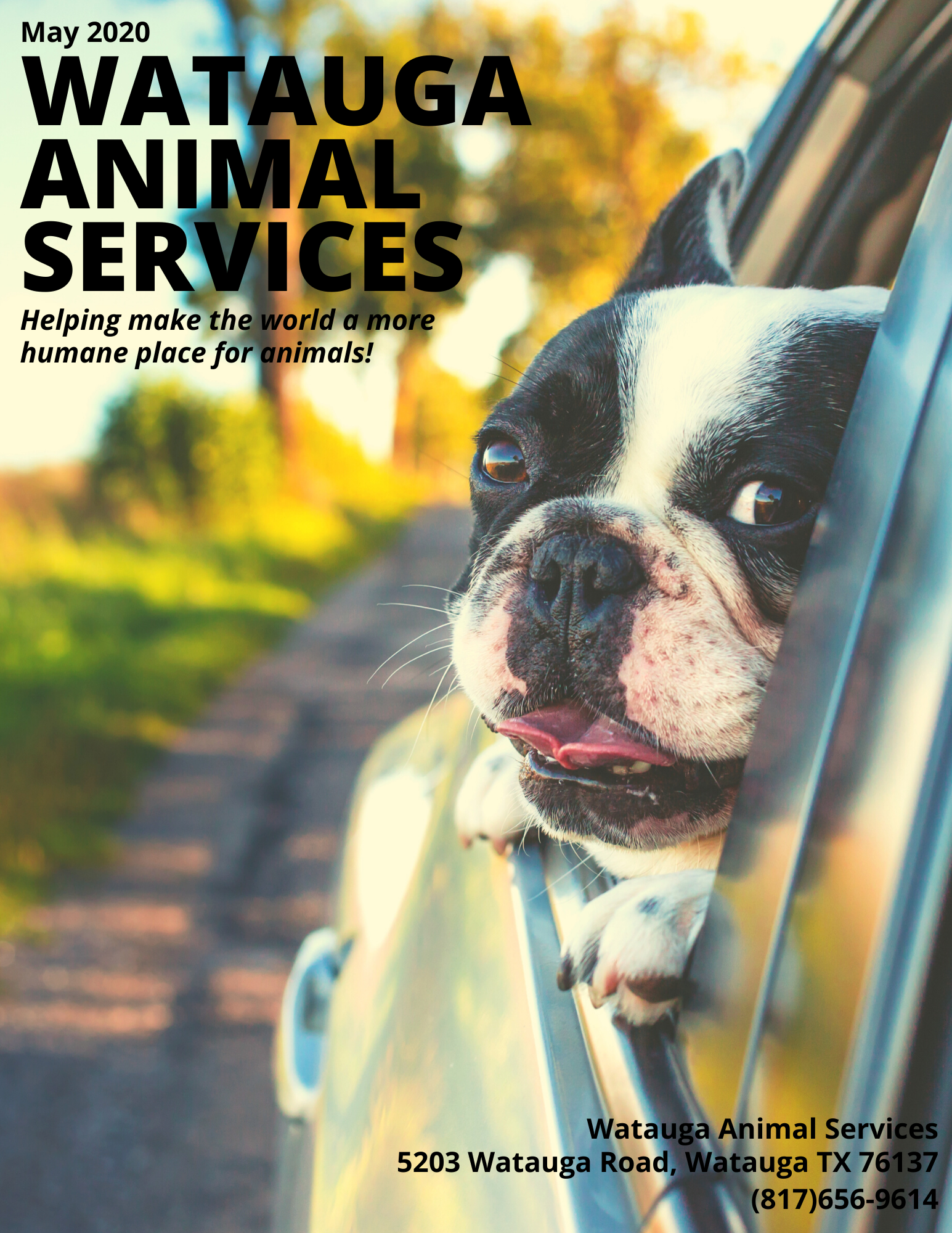 WATAUGA ANIMAL SERVICES May 2020 Cover